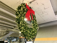 """""""What if it's the there / and not the here / that I long for?"""" ―Tyler Knott Gregson ❄️🎄❄️ (anokarina) Tags: appleiphone8 ohare chicago illinois il windycity winter xmas christmas holiday decorations wreath ord ohareinternationalairport red bow lights chicagoist 🎄 ❄️"""