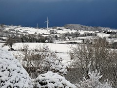 The garden:  new wind turbine (ronmcbride66) Tags: windturbine landscape pylon greenenergy garden gardenview thegarden frontgarden snow snowylandscape shrubs drumlin trees