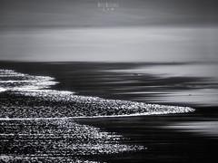 Memoria (rafaberlanga) Tags: sea nature beach water wave coastline outdoors landscape seascape backgrounds scenics sunset reflection nopeople dark dusk beautyinnature watersedge summer sunlight olympus mzuiko
