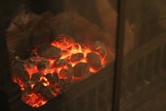 Embers (daveandlyn1) Tags: fire embers guard fireplace glow redhot f3556iii efs1855mm canoneos1200d