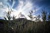 _MG_3305.jpg (qitsuk) Tags: sicily italy eolianislands landscape volcano stromboli
