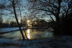 Frozen pond in the evening light. (Eddie Crutchley) Tags: europe england cheshire outdoor nature beauty simplysuperb sunlight sunset silhouettes pond trees snow greatphotographers