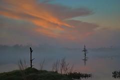 Misty Morning Sunrise (River-Life) Tags: riverlife florida nikon d5300 nature outdoors outdoor circlebbarreserve foggy sunrise mist