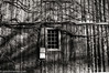 Lines (johnlishamer.com) Tags: 2017 35mm bataviail foxriver hc110 ilfordhp5plus400 illinois lishamer nikkor24mmf28 nikkor24mmf28ais nikonfa photoexif slr film johnlishamercom pushedto800 winter