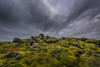 untitled (1 of 1) (Mike Ver Sprill - Milky Way Mike) Tags: nisi haida filter nikon d810 1424 landscape nature moss lava fields clouds cloudy cloud iceland icelandic travel rocks rocky south mossy outdoors