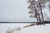 Rock Lake - Saint Croix State Forest, Minnesota (Tony Webster) Tags: december minnesota saintcroixstateforest stcroixstateforest frozen frozenlake lake snow stateforest winter hinckley unitedstates us