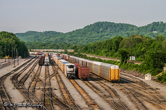 CSX Radnor Yard (M.J. Scanlon) Tags: csxradnoryard csxt csx nashville tennessee tree sky digital merchandise commerce business wow haul outdoor outdoors move mover moving scanlon mojo canon eos engine locomotive rail railroad railway train track horsepower logistics railfanning steel wheels photo photography photographer photograph capture picture trains railfan
