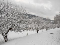 PC160122 (turbok) Tags: dokumentation landschaft raumberggumpenstein schnee stimmungen winter c kurt krimberger