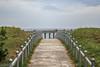 Ostseestrand in Binz (neuhold.photography) Tags: binz erholung ostsee reise rgen sand strand tourismus urlaub