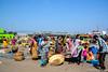 20171121-DSC_0127.jpg (drs.sarajevo) Tags: andrapradesh fisheryharbour visakhapatnam india
