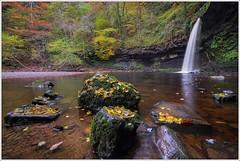 Autumn Colours at Sgwd Gwladys (Lady Falls) (neilholman) Tags: autumn colours pontneddfechan sgwd gwladys lady falls