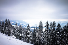 deep blue (gato-gato-gato) Tags: 28mm apsc alpen atzmaennig atzmännig berge oberland ricoh ricohgr schneeschuhe schneeschuhlaufen voralpen wandern wanderung winter zürcheroberland autofocus digital gatogatogato gatogatogatoch hiking mountaineering pointandshoot snapshot snowshoeing tobiasgaulkech wwwgatogatogatoch sanktgallenkappel sanktgallen schweiz ch switzerland suisse svizzera sviss zwitserland isviçre