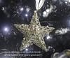 a star is born merry christmas all (paul hitchmough photography 2) Tags: festivesession christmas christmastree astarisborn star boken paulhitchmoughphotography nikond800 nikon2470mm