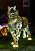 LANTERNS-45 (Claire Quinn) Tags: edinburghzoo giantlanterns lanterns giantlanternsedinburgh
