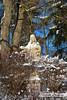 Christus Statue im Winter (Howdys) Tags: jesus christus winter schnee blau aulendorf oberschwaben badenwürttemberg deutschland christlich kalt sträucher nikon d7100