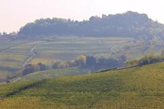 Barolo (dolceluxury) Tags: barolo italy northernitaly wine september 2017 travel luxurytravel scenic romantic historic