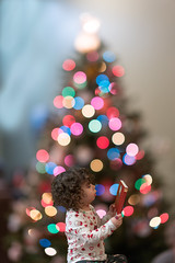 _DSC2713 Alice's new book-'Twas The Night Before Christmas (Charles Bonham) Tags: christmas christmastree christmaslights bokeh book present sonya7rll sonyzeissfe55f18 charlesbonhamphotography child todler curlyhair girl cute reading 'twasthenightbeforechristmas