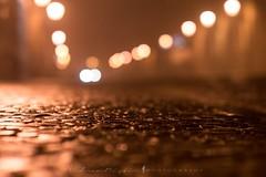 Cobblestones (ristic.vedran42) Tags: osijek croatia nikon nikond3200 d3200 samyang samyanglens samyang85mm bokeh nightphoto cobblestones oldtown tvrđa