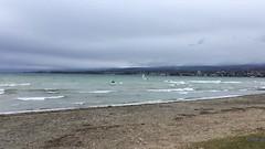 Holà Carmencita! (Iris_14) Tags: léman lacléman suisse switzerland romandie vaud vent kitesurf schweiz lake