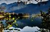 Foglie (giannipiras555) Tags: autunno foglie riflessi panorama landscape paesaggio