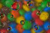 P52 Week 2   Circle (Steph*Powell) Tags: water waterdrops colour mms nikond5100 macro