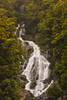 Fantail Falls (Scintt) Tags: newzealand waterfall trees stream river flowing multiple exposure dramatic surreal epic landscape nature natural telephoto nikon travel tourism fantail falls scintt scintillation jonchiangphotography rushing rocks green