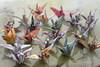 1000 cranes (Bev-lyn) Tags: paper cranes origami japanese legend