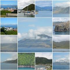 New Zealander journey - Part II (Pedro Nuno Caetano) Tags: fdsflickrtoys newzealand wellington cookstrait picton journey mosaic
