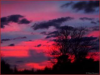 Thuir : lever de soleil du 3 janvier 2018