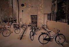 Here a bike, there a bike, everywhere a bike (ᗷOOᑎᕮ ᗷᒪᗩᑎᑕO) Tags: secondlife winter snow scenic car bike van ionic haikei prtty hideki oh spell ideza mikunch pumec moon haiku senses tree sky people building road grass rideco bikes bicycle wheel
