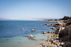 2017-AugSep-California-92 (4x4Foto) Tags: california loverspoint montereybay pacificgrove pacificocean aquarium beautiful beauty centralcoast cypress flowers nature plants redwoods rocks seagulls seals seaside sunset trees villages water virginia unitedstates