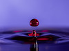 Water moments (Randall Mitchll Photography) Tags: macropictures macrophoto macrophotography macro 105mmleans 105mm nikond500 d500 nikon color splash waterdropphoto waterdroppictures waterdropphotography waterdrop water