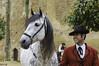 COTI022017_146R_FLK (Valentin Andres) Tags: alcazardelosreyescristianos andalucía cordoba córdoba españa spain andalusian andaluz caballerizasreales caballo christian horse jinete king rider