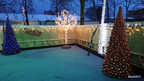 Christmas in Hasselt