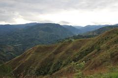 IMG_0827 (raikbeuchler) Tags: colombia precolombian tierradientro unescoweltkulturerbe unesco unescoworldheritagesite valledecauca tribes archäologie archeology 2017