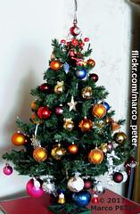 Weihnachtsbaum 2017 (Photo No. 1) (MarcoPeter) Tags: weihnachtsbaum weihnachten christmas tree arbre noël árbol navidad albero natale