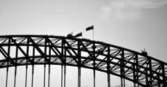 Bridge silhouette 2 (PhillMono) Tags: nikon d7100 dslr sydney harbour new south wales australia black white sepia light shade monochrome bridge arch steel iron silhouette creative imaginative perspective