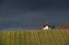 Marienkapelle Lichtental (bryanlotz) Tags: chapel kapelle lichtental baden wine cloudsky weinreben winter wolkig wolken tal hügel dunkel