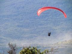 Parapente - Playa Larga (josé_ernesto) Tags: ushuaia atardecer deporte playa bosque parapente