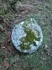 South Dartmoor Worked Stone Yarner (Bridgemarker Tim) Tags: devon dartmoortorquay teignmouth badgersholt