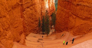 Descent into Bryce Canyon