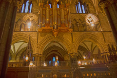 4U5A6437 (bartlett2) Tags: | worcester cathedral christmas trees worcestershire