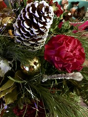 Christmas Arrangement (stashheap) Tags: pinecone carnations flowers