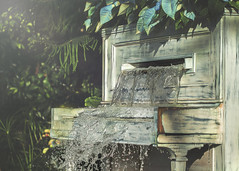 when the music come rushing out (rockinmonique) Tags: 52in52 music piano fountain water lush muttart moniquew canon canont6s tamron copyright2017moniquew