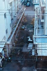 171230_862220 (keita matsubara) Tags: oimachi ooikeiba tokyo japan darby keiba 大井競馬 大井町 東京 日本