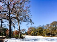 IMG_5470.jpg (proximity2nature) Tags: olmstedlinearpark snow atlanta georgia unitedstates us