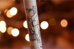 wandering stick....... (atsjebosma) Tags: macromondays stick wanderingstick macro bokeh atsjebosma thenetherlands detail painting wandelstok
