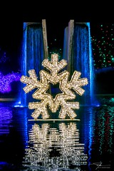 Blossoms of light 5966 (J H Newton Images) Tags: nikond850 holidays lights reflection snowflake fountain blossomsoflight denverbotanicgardens