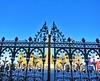 Queen's Gates/Porte de la Reine, Ottawa, Ontario, Canada (LuciaB) Tags: queensgates wellingtonwall ottawa ontario canada parliamenthill wrought iron