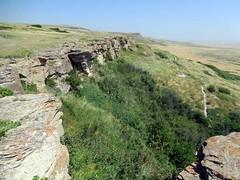 Head Smashed-In Buffalo Jump (D-Stanley) Tags: smashedinbuffalojump plains indian hunters stampeeded buffalo alberta canada